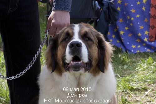 Злато Екатерины БАЛОВНИЦА НЮША