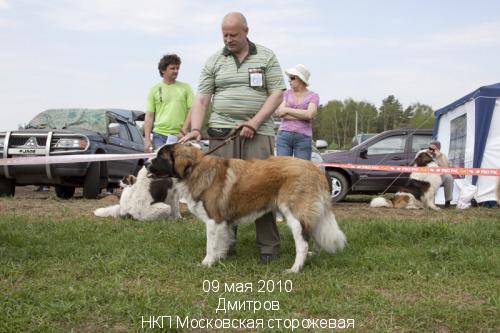 GRAND BOY iz Tsarskoselskoy usadby