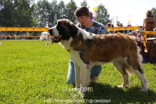 tsarhana_3.jpg