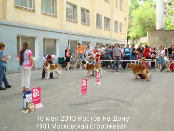 rostov12.jpg